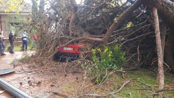 Ağaç park halindeki otomobilin üzerine devrildi