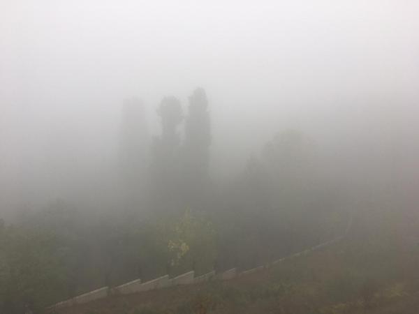 Kocaeli'nde sabah saatlerinde etkili olan sis hayatı olumsuz etkiledi